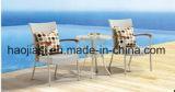 Openlucht /Rattan/de &Table Reeks van de Stoel van de Rotan van het Meubilair van de Tuin/van het Terras/van het Hotel (HS 1004C&HS 6060DT)