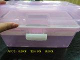 Contenitore di plastica Hsyy3104 di contenitore di memoria di alta qualità calda di vendita