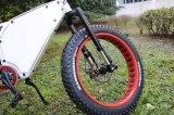 Eの自転車山のFatelectricの脂肪質のバイクのバイク