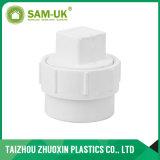 주입 기술 PVC 플라스틱 Dwv 플러그 (D09)