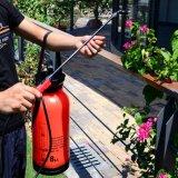 De Tuin die van de rode Kleur Draagbare Spuitbus water geven