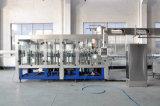 Imbottigliatrice di riempimento di frutta del succo dell'animale domestico della bottiglia del liquido automatico della bevanda