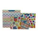 Цветная печать картонной упаковке с ручкой и бумажных мешков для пыли