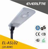 Hete 30W LEIDENE Sellling van Everlite ZonneStraatlantaarn met de Batterij van het Lithium
