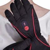 5 vingers en de verwarmde handschoen van de Achterkant voor Openlucht