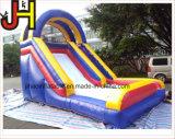 膨脹可能な跳躍のスライドは、屋外の膨脹可能子供のためのスライドを乾燥する