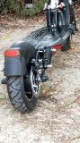 2018 motorino elettrico poco costoso del motore senza spazzola del mozzo di 52V 600W per la gara motociclistica su pista 4 degli adulti