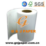 Plastic Transferring를 위한 Small Roll에 있는 좋은 Quality Transfer Paper