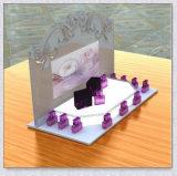 Cremagliera di visualizzazione acrilica su ordinazione del ciglio