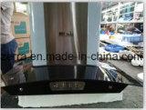 Cappuccio dell'acciaio inossidabile 900mm/cappa da cucina per l'apparecchio di cucina/cappuccio R-Zz-A3 dell'intervallo