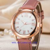 Fashion Watch personnaliser occasionnel de montres (WY-17045)