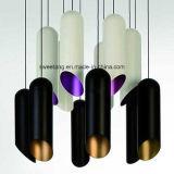 6 Farben in der hängenden Aluminiumlampe für Innenlicht
