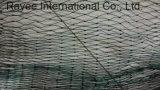 خضراء [نوتلسّ] [فيش تكل] [هدب] صيد سمك قفص شبكة