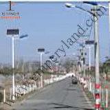 20W Solar-LED Straßenlaternemit 7m Pole für Park (DZS-07-20W)