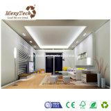 Tornar barato o material decorativo do projeto WPC para a parede interior