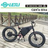 China Popular Mountain bicicleta eléctrica/Vehículo/ciclomotor con 72V motor trasero de 5000 y pantalla TFT