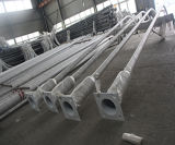 6m-12m heißes BAD galvanisierter Park-Lampen-Pfosten für Verkauf