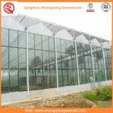 Chambre verte en verre de culture de fleur/fruits/légumes avec le système de parasol