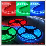 A tira do diodo emissor de luz do RGB da alta qualidade 5050 com Ce RoHS aprovou