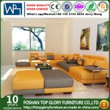 Novo design colorido brilhante mobiliário sofá de couro (TG-5004)