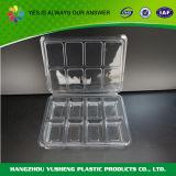Contenitore quadrato di plastica con il coperchio