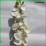 Flores artificiales de seda de realismo de orquídeas falsos para la boda la decoración del hogar