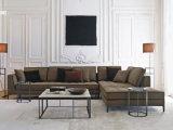 Sofà domestico di combinazione del salone della mobilia
