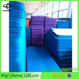 O tapete de ioga NBR mais barato, esteira de ioga de PVC. TPE Yoga Mat