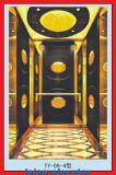 Levage de maison d'ascenseur de Villla de qualité