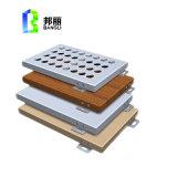 Constructeur en aluminium solide de panneau de revêtement de mur de construction de projet important de la Chine