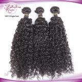 卸し売りRemyのカーリーヘアーのミンクのブラジル人の毛