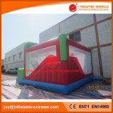 Castello di salto gonfiabile combinato per il parco di divertimenti (T3-906)