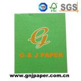Luz verde de alta calidad de la tarjeta de papel para la venta