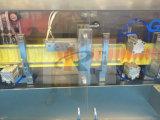 Máquina de relleno de formación automática del lacre de la botella plástica de Ggs-118 P2