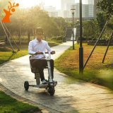 Rueda al por mayor del surtidor tres de China plegable la vespa eléctrica de la movilidad