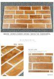 فوشان مواد البناء بلاط الحائط مع ISO9001 (36301)