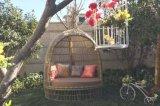 Sofà Furniture-65 esterno del rattan di svago