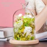 Flor preservada en el vidrio para el regalo de cumpleaños de la tarjeta del día de San Valentín