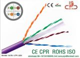 Câble réseau CAT6 UTP CAT6&CAT6, CP&CMR 23AWG du câble réseau