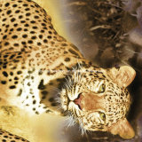 100%Polyester запятнало ткань леопарда напечатанную Pigment&Disperse для комплекта постельных принадлежностей