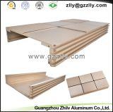 SGS 중국 공장 6063 양극 처리된 알루미늄 밀어남