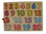 Het onderwijs Houten Houten Raadsel van het Speelgoed (34721)