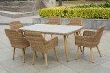 Wicker мебель/Wicker обедая стул комплекта/ротанга (SC-1722)