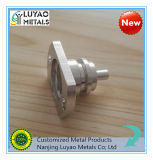 Precisie CNC die CNC machinaal bewerken die met Aluminium /Metal machinaal bewerken