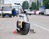 Mademoto熱い販売法18*9.5のインチの車輪のCitycocoの電気スクーター