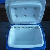 Voiture 10L/réchauffeur du refroidisseur d'un réfrigérateur Boîte en plastique pour pique-nique