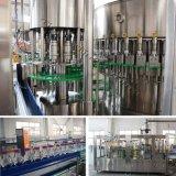 Machine de remplissage de bouteilles automatique de boisson de l'eau