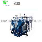 Компрессор газа давления CNG малого занятия высокий