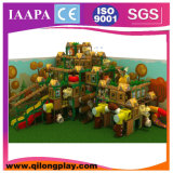 Спортивная площадка новой конструкции деревянная ягнится крытое (QL--032)