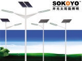 réverbère solaire de 60W LED
